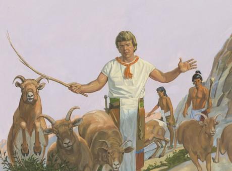 Ammon gathering animals