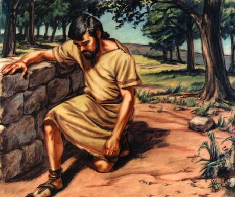 Chapter 6 Noah