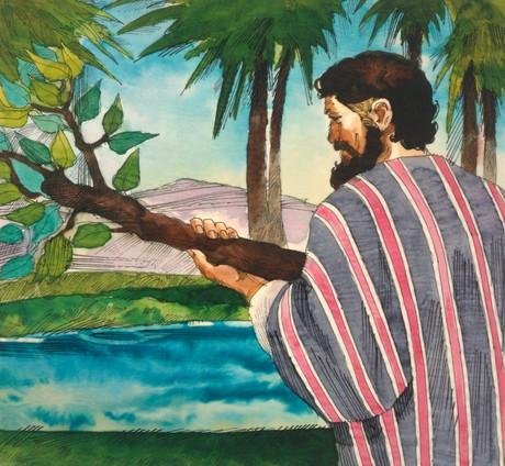 Capitulo 18 Los Israelitas En El Desierto