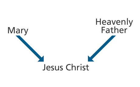 diagram, Mary, Heavenly Father, Jesus Christ
