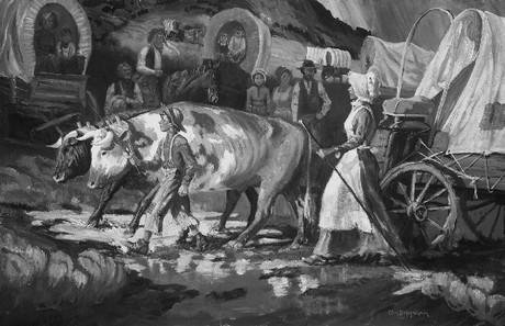ox and wagon