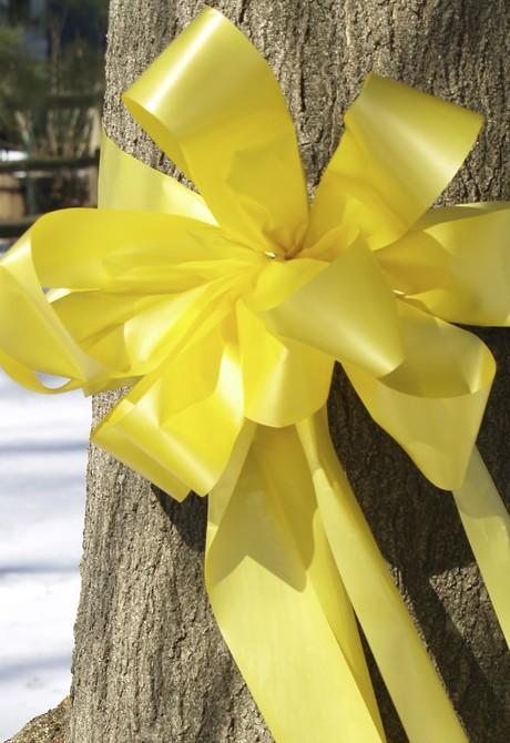 yellow ribbon around tree