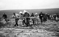 teachers with handcarts