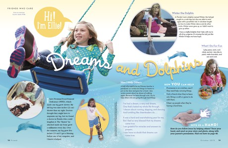 Dreams and Dolphins