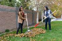 women raking leaves