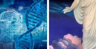 brain, DNA, and Christus