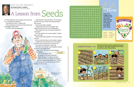 A Lesson from Seeds