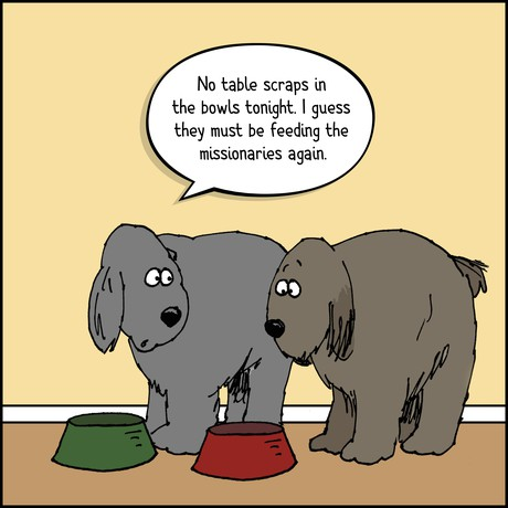 dogs at food dishes