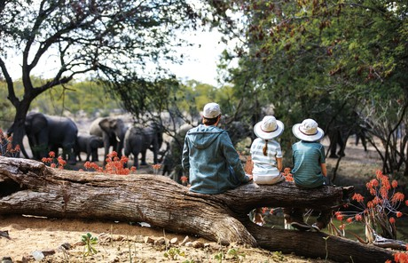 cerebral palsy dating uk