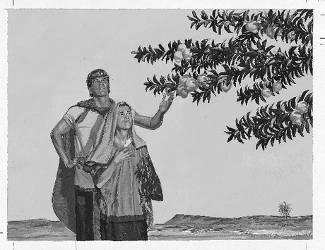 Couple taking fruit from tree of life